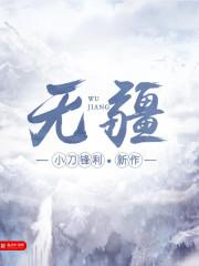 海贼王之刺客幽影